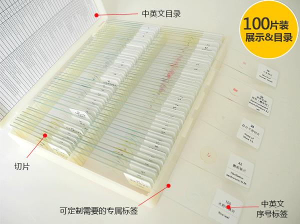 100种混合类动植物生物切片套装