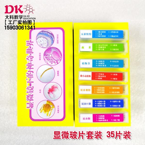 显微教学玻片彩色套装35种儿童使用动植物切片